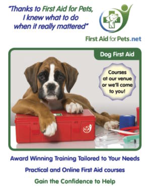 First Aid for Pets.jpg