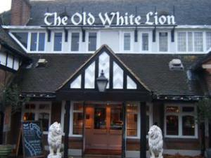 old white lion.jpg