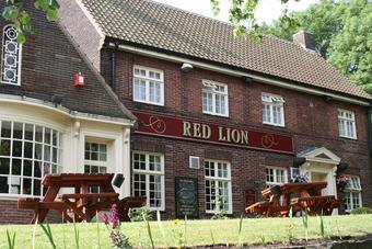red lion tyne.jpg