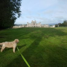 lowther castle.jpg