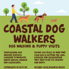 dog walking leaflet facebook no offer.jpg