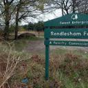 rendlesham forest.jpg