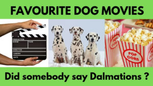 favourite dog movies