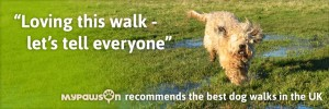 """Loving this walk - let's tell everyone"" MyPawsOn recommends the best dog walks in the UK"