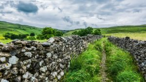 visit the yorkshire dales with your dog
