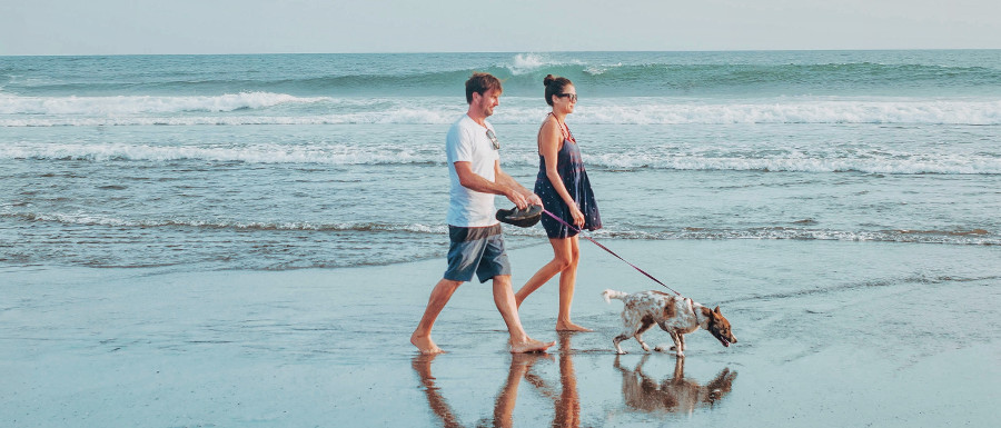 couple walking their pet on the beach in dog friendly Norfolk